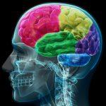 How Do Insurance Companies Determine Impact of a Brain Injury?