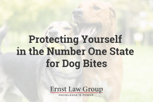 Protecting Yourself in the Number One State for Dog Bites
